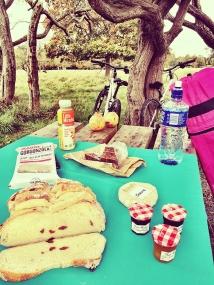 maraviwonderful_phoenix-park_picnic